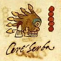 Malīnalli - Codex Rios 32v.jpg