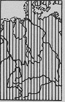 Verbreitung Waldmaus - DJN (1994) - Peter Boye - Heimische Säugetiere