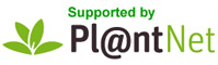 Plantnetheader.jpg