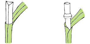 Piktogramm/Logo