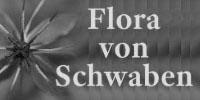 Datei:Logo fvschwaben sw.jpg