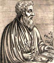Dioscorides01.jpg