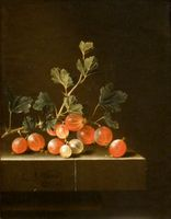'Gooseberries on a Table' by Adriaen Coorte, 1701, Cleveland Museum of Art.JPG
