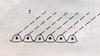 Bestimmungsschlüssel der wichtigsten Gräser SH (E.-W. Raabe) Abb. 07.png