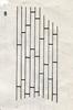 Bestimmungsschlüssel der wichtigsten Gräser SH (E.-W. Raabe) Abb. 08.png