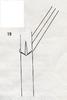 Bestimmungsschlüssel der wichtigsten Gräser SH (E.-W. Raabe) Abb. 19.png