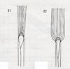 Bestimmungsschlüssel der wichtigsten Gräser SH (E.-W. Raabe) Abb. 21 und 22.png