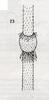 Bestimmungsschlüssel der wichtigsten Gräser SH (E.-W. Raabe) Abb. 23.png