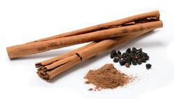 alt=Description de l'image Cinnamomum verum spices (bearbeitet).jpg.