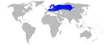 Verbreitung Moorfrosch (Rana arvalis)