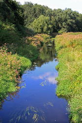 im Naturschutzgebiet Erpetal, Wanderweg zwischen S-Bahnhof Hirschgarten und Hoppegarten – Leila Paul, CC BY-SA 3.0
