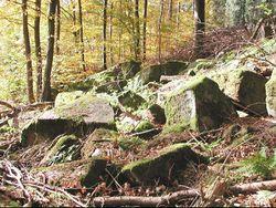 Habitat - Michael Linnenbach (CC BY-SA 3.0)