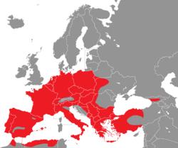Verbreitung des Gartenbaumläufers in Europa - Alice Chodura (CC-BY-SA-3.0)