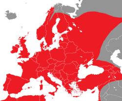Verbreitung des Grünfinks in Europa - Alice Chodura (CC-BY-SA-3.0)