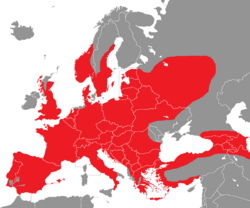 Verbreitung des Grünspechts in Europa - Alice Chodura (CC-BY-SA-3.0)