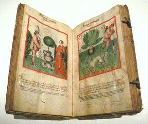 Ibn Butlan Receuil de Sante Rhenanie 2nd half 15th century.jpg