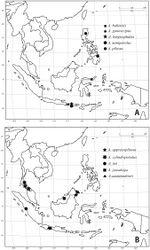 Figure 26. Distribution of Aenictus ceylonicus group. A Aenictus baliensis, Aenictus gonioccipus, Aenictus longicephalus, Aenictus minipetiolus, Aenictus pilosus B Aenictus appressipilosus, Aenictus cylindripetiolus, Aenictus itoi, Aenictus jawadwipa, Aenictus sundalandensis.