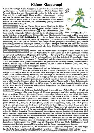 Kleiner Klappertopf (Pflanzentafel Natura Miriquidica e.V.).pdf