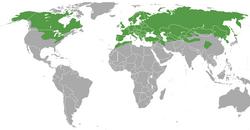 Verbreitungskarte von Mustela nivalis - IUCN Red List of Threatened Species,CC BY-SA 3.0
