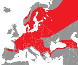 Verbreitung des Schwarzspechts in Europa - Alice Chodura (CC-BY-SA-3.0)