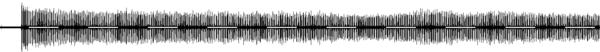 Tettigonia viridissima singing male (Andreas Plank 2011-07-24) sonogram 20sec.png