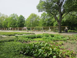 Treptower Park  – Another Believer, CC BY-SA 4.0