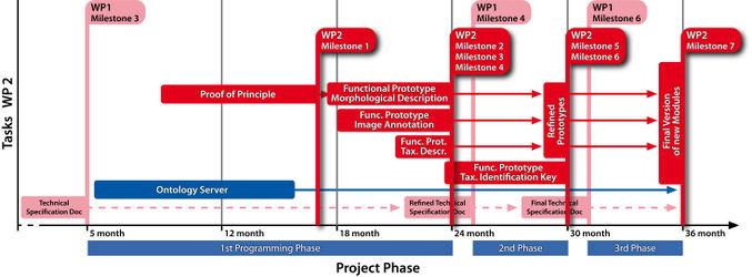 "Milestones of DFG project ""eScience-Compliant Standards for Morphology"" Work Package 2"