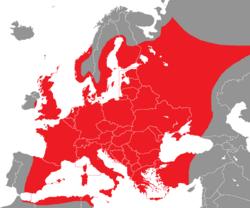 Verbreitung des Waldlaubsängers in Europa - Alice Chodura (CC-BY-SA-3.0)