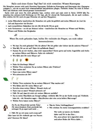 Wiesen-Kammgras (Pflanzentafel Natura Miriquidica e.V.).pdf