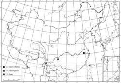 Figure 5. Distribution of Sinosciapus.