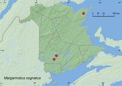 Map 13. Collection localities in New Brunswick, Canada of Margarinotus cognatus.