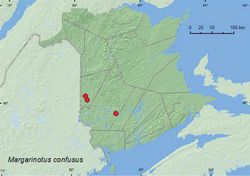 Map 14. Collection localities in New Brunswick, Canada of Margarinotus confusus.