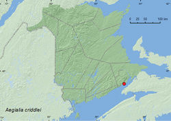 Map 3. Collection localities in New Brunswick, Canada of Aegialia criddlei.
