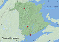 Map 9. Collection localities in New Brunswick, Canada of Planolinoides aenictus.