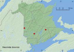 Map 11. Collection localities in New Brunswick, Canada of Neomida bicornis.