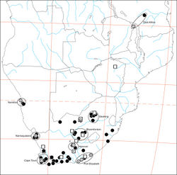 "Figure 49. Distribution of Gandanameno. Type localities are numbered circles, males are squares (if with letters, these refer to illustrations in Fig. 48), non-type females are filled circles. Type localities: circle 2 Eresus bubo L. Koch, 1865; circle 3 Eresus inornatus Pocock, 1898; circle 4 Eresus spenceri Pocock, 1900; circle 5 Eresus echinatus Purcell, 1908; circle 6 Eresus namaquensis Purcell, 1908; circle 7 Eresus depressus Tucker, 1920; circle 8 Eresus purcelli Tucker, 1920; type locality of Eresus fumosus C. L. Koch, 1837 is reported simply as ""Afrika"" and no type specimen is known (Lehtinen 1967[1]: 235). Localities of males illustrated in Fig. 48: square A Fig. 48A–C square D Fig. 48D square E Fig. 48E square F Fig. 48F. Ellipsoids indicate regions for size chart Fig. 50, region names are for convenience only."
