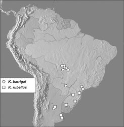 Figure 7. Map showing distributional records of Kaszabister barrigai and Kaszabister rubellus.