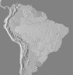Figure 8. Map showing distributional records of Kaszabister ferrugineus.