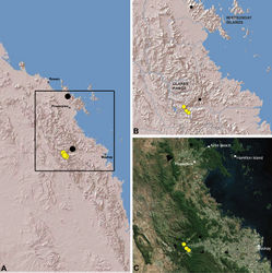 Figure 24. Distribution of Austrarchaea griswoldi sp. n.: A, topographic map showing the known distribution of Archaeidae in the north-eastern Queensland Mackay and Whitsundays Hinterland, with collection localities for Austrarchaea griswoldi highlighted in yellow; B–C, topographic and satellite maps showing detail of inset (A). Small circles in (B–C) denote unidentified female specimens; large circles denote described species of Austrarchaea.