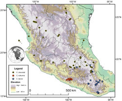 Figure 41. Map of extreme southeastern Texas, U.S.A. and Mexico north of the Isthmus of Tehuantepec, showing position of localities for species of the chevrolati complex.
