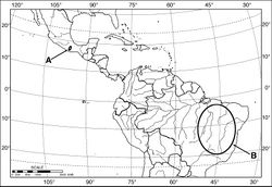 Map 1. Outline map of southern North America, Middle America and northern South America, showing generalized geographical range of species of Coarazuphium. A Coarazuphium whiteheadi, new species B Coarazuphium bezerra, cessaima, formoso, pains, tapiaguassu and tessai.
