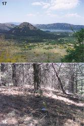 Figures 17–18. Habitats of Urartucoris ermolenkoi P. V. Putshkov, 1979. 17 Landscape of the Gölcük NP 18 collecting site A. (Photos G. Japoshvili).