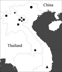 Figure 1. Distribution of the lancangjiang species group. ■ Orthogonius lancangjiang Tian & Deuve ● Orthogonius macrophthalmus sp. n. ★ Orthogonius carinatus sp. n. ▲ Orthogonius euthyphallus sp. n. ◆ Orthogonius euthyphallus bolavenensis ssp. n.