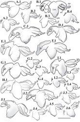 Figure 51. Liturgusa, male genital complex from the ventral perspective (scale bar = 1 mm, but all secondary illustrations 60% of scale (e.g. B.2 and B.3). Liturgusa cayennensis Saussure, 1869: A.1 French Guiana (ANSP 055) A.2 French Guiana (MNHN 074). Liturgusa lichenalis Gerstaecker, 1889: B.1 Peru (CAS 005) B.2 Peru (CLEV GSMC000259) B.3 Peru (CAS 010) B.4 Peru (MEKRB 010). Liturgusa guyanensis La Greca, 1939: C.1 Guyana (CAS 017). Liturgusa bororum sp. n.: D.1 Holotype from Peru (MNHN 038). Liturgusa cura sp. n.: E.1 Holotype from Venezuela (ANSP 082). Liturgusa fossetti sp. n.: F.1 Paratype from Panama (CAS 020). Liturgusa kirtlandi sp. n.: G.1 Paratype from Bolivia (CLEV GSMC000276) G.2 Paratype from Bolivia (CLEV GSMC000279) G.3 Paratype from Bolivia (CLEV GSMC000283) G.4 Paratype from Bolivia (CLEV GSMC000282). Liturgusa manausensis sp. n.: H.1 Holotype from Brazil (USNM 001). Liturgusa maya Saussure & Zehntner, 1894: I.1 Colombia (AMNH 011) I.2 Peru (ANSP 038) I.3 Venezuela (AMNH 023) I.4 Guatemala (USNM 014). Liturgusa tessae sp. n.: J.1 Paratype from Bolivia (CLEV GSMC000268) J.2 Paratype from Brazil (ZMHB 004) J.3 Paratype from Brazil (USNM 007) J.4 Paratype from Brazil (MNHN 086) J.5 Paratype from Brazil (ANSP 110); J.6 Paratype from Brazil (ANSP 109).
