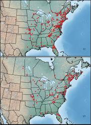 Figures 12–13. Maps showing collection localities in North America. 12 Paratenetus punctatus 13 Paratenetus exutus.