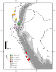 Figure 5. Distribution of Dipsas georgejetti, D. oligozonata, D. oswaldobaezi, and D. williamsi in Ecuador and Peru. Figures represent known localities.