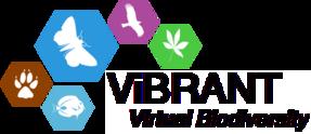 Logo of ViBRANT