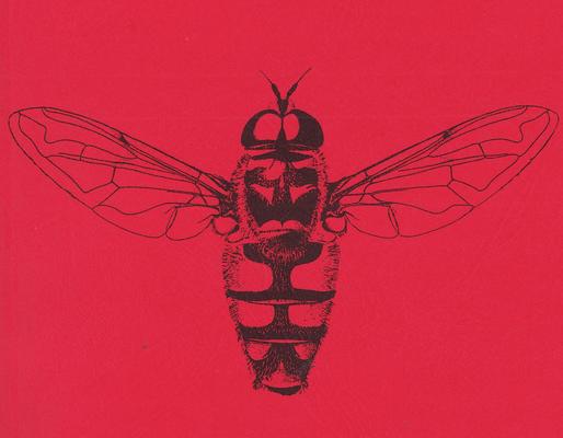 DJN-Schwebfliegen Bothe 1994 S.1 Titelbild Myathropa florea.png