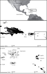 Map 9. Map of the northern Caribbean (insets) showing the distribution of three species of Selenops in the region, Selenops lindborgi Petrunkevitch (white diamonds), Selenops souliga sp. n. (black circles) , and Selenops amona (ital.) sp. n. (white circles). Due to the large difference in scale of the different islands, there are two insets. (Inset 1: GI=Great Inagua, DR=Dominican Republic, PR=Puerto Rico (Inset 2: SKN=St. Kitts and Nevis).