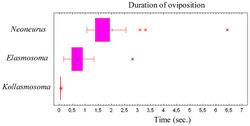 Figure 79. Duration of the oviposition behaviour (comprising the grasping of the ant by the wasp and the insertion of the ovipositor, until taking off) of three neoneurine Euphorinae: Neoneurus vesculus sp. n. (N = 17), Elasmosoma luxemburgense (N = 38) and Kollasmosoma sentum sp. n. (N = 19). Interquartile ranges and outlier data are given.